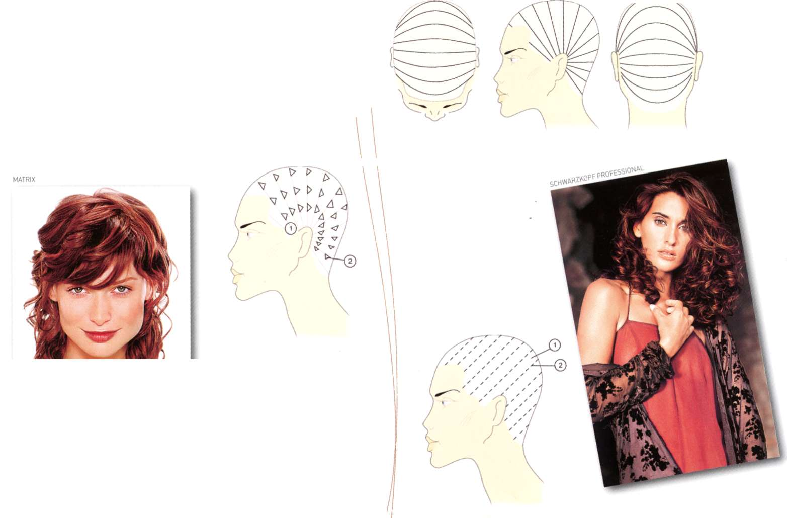 Схема окрашивания волос в один тон фото