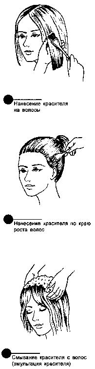 Этапы окраски волос (oбщие сведения)
